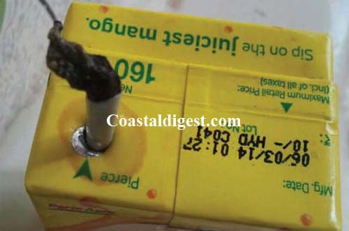 Dead snake like creature found in Frooti tetra pack