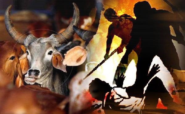 Bajrang Dal mulls forming Gau Raksha Dal in Udupi district ...